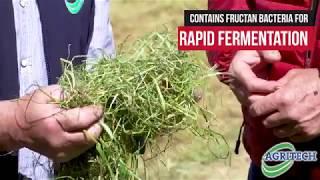 农业技术-通过添加添加剂提高青贮饲料质量