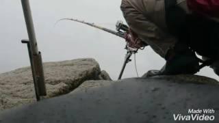 石鯛釣り#1内之浦 thumbnail