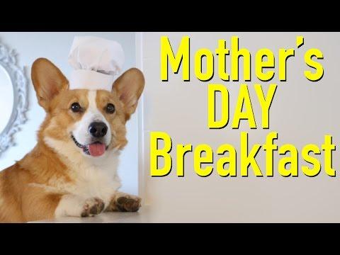 MOTHER'S DAY - Topi the Corgi