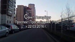 видео прокат авто в Санкт проспект просвещения