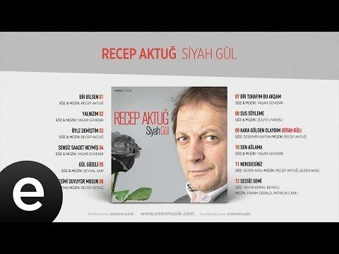Yalnızım (Recep Aktuğ) Official Audio #yalnızım #recepaktuğ