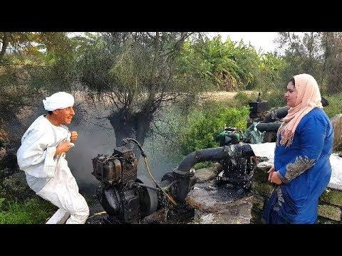 لن تصدق مافعله الحاج القرموطي مع بطة وردة فعل صادمة من الحاج سعد / اضحك من كل قلبك 😂😂