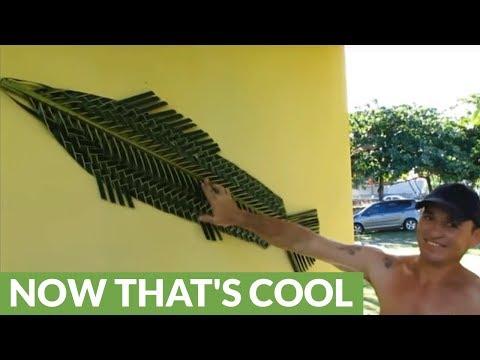 Brazilian Man Fashions Fish Art Out Of Coconut Leaf