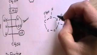 CHEM 1060 Lecture 052 Cyclic Forms of Monosaccharides