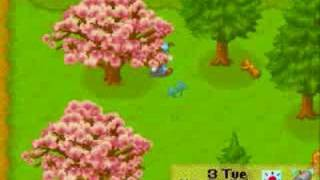 Harvest Moon: Friends of Mineral Town Beginners Guide