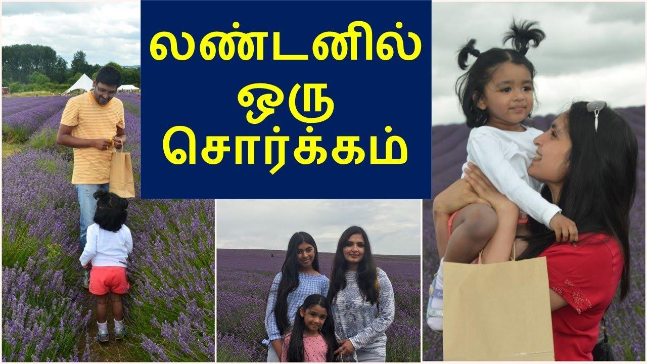 லண்டனில் எனக்கு மிகவும் பிடித்த இடம் / How to make Lavender Infused Oil / Chennai Girl In London