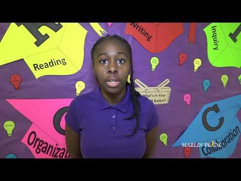 Marlin Junior Academy Avid Program