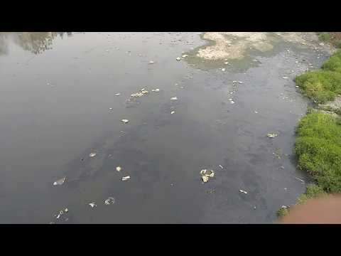 Pollution in Bagmati River