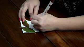 Diy Thanksgiving Crafts Series -  Place Mats & Table Place Cards - Decor