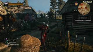 The Witcher 3 Заказ  Лешачиха