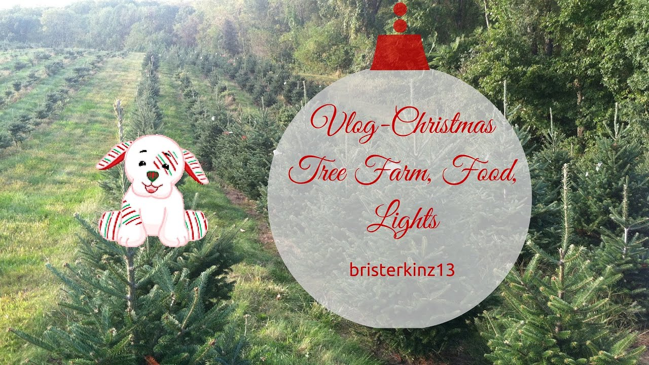 Vlog christmas tree farm food lights youtube