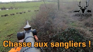 Chasse aux Sangliers 2021 - Une belle compagnie !