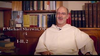 P. Sherwin #4 : How did Aquinas determine the goal of human life? (I-II, 2)