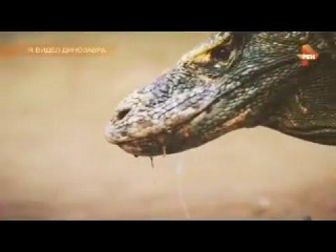 Самые шокирующие гипотезы. Я видел динозавра 04. 04. 2016.