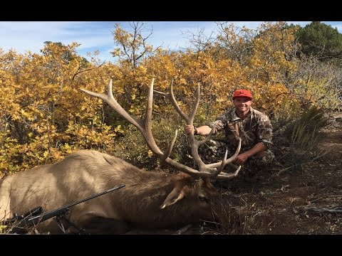 UTAH RIFLE ELK HUNT | WE FOUND THE ELK!!!