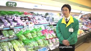Panasonic Hydroponic Farming Solution