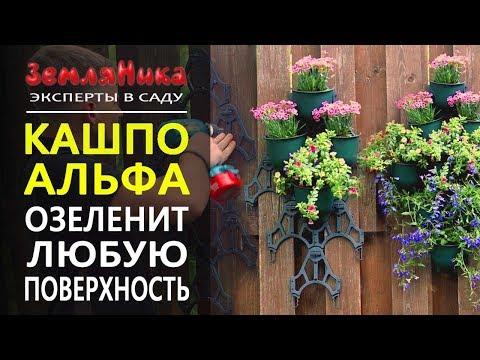Создайте свою фитостену. Удобно монтировать дома, на балконе, в саду. 0+
