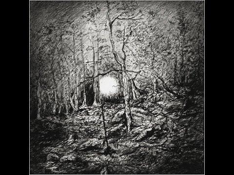 Duplicate Records- Vetter - Av Sublim Natur-  Video Review