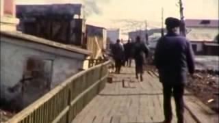 видео Пересматривая «Ассу». Пальмы в снегу, Ялта зимой