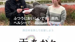 宇和郡松野町にある虹の森公園まつのを訪れた間さん。 鹿肉ソーセージや...