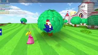 Roblox Super Mario Online I GOT THE NEW SONIC GAMEPASS!| Gabriel Pagan