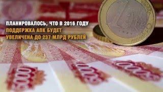 Цены на хлеб в России в 2016 году могут вырасти на 10-15%