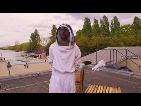 Un toit pour les abeilles : les apiculteur.rice.s en font leur miel !