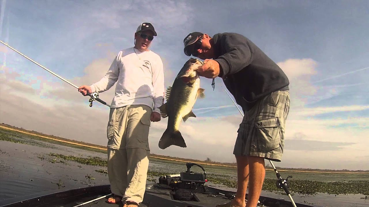 Florida bass fishing with casey martin youtube for Best bass fishing in florida