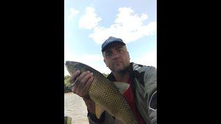 Размышления о рыбалке или подготовка к соревнованиями по ловле фидером