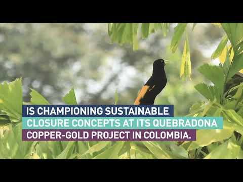 Mining with principles at AngloGold Ashanti's Quebradona copper-gold project