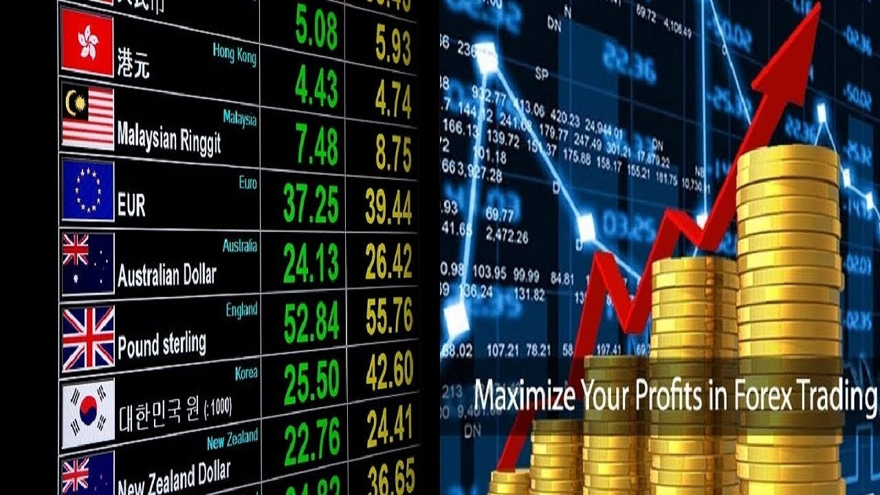 Forex Trading in Zimbabwe - Guide to Begin Online