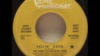 The James Cotton Blues Band - Feelin
