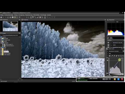 Capture Nx D уроки - фото 5