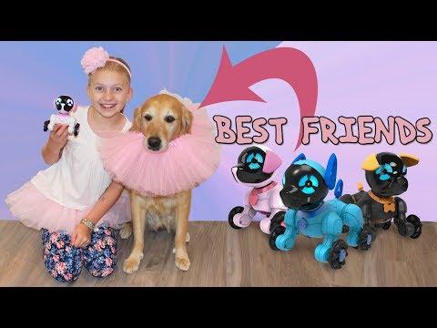 Doggie Party Playtime - Kona Wears a Tutu!
