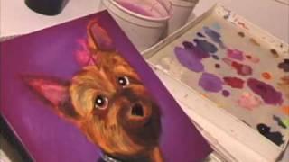 Pet Portrait Of  Yorkshire Terrier Sophie Time Lapse Video