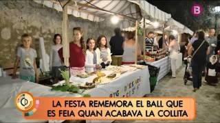 XXV Festa del sequer a Lloret de Vistalegre