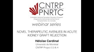 CNTRP Webinar - Kidney Rejection and Novel Therapeutics - Dr Héloïse Cardinal