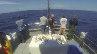 Fort Bragg Tuna Fishing