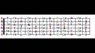 guitar fretboard diagram - notes on the guitar -for  e tuned guitars  ( e a d g b e)