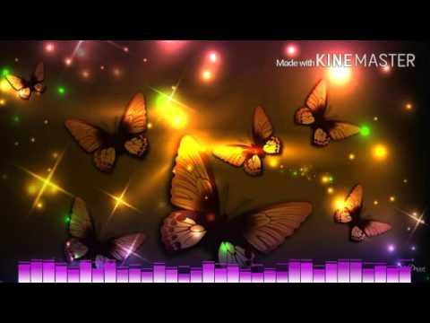 Butterflies - Amba Shepherd
