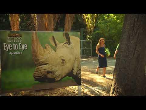 Destination WA - Perth Zoo