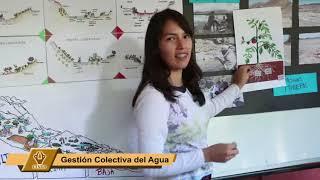 Intercambio Bolivia Guatemala, mayo 2019