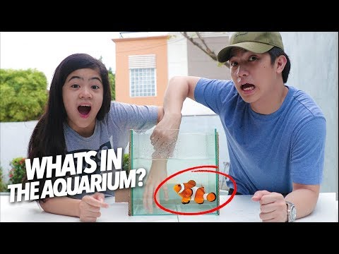 What's In The Box Underwater Edition!!   Ranz and Niana