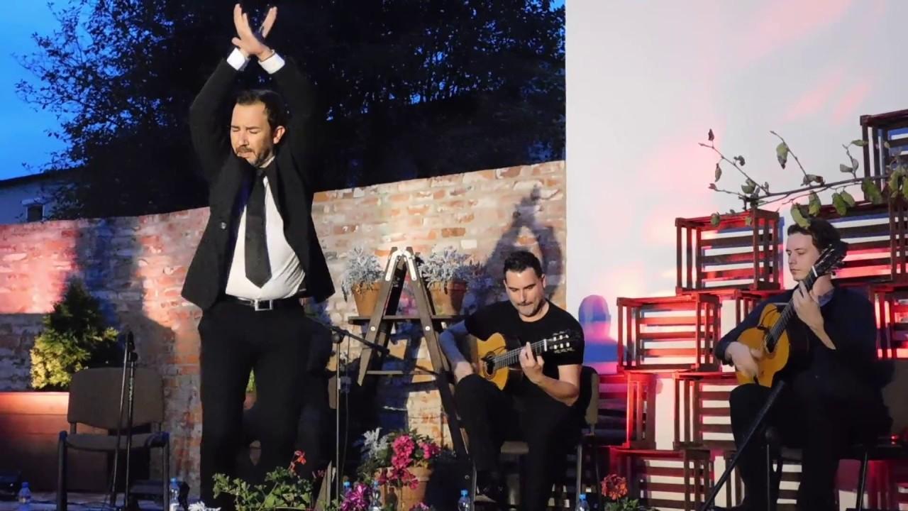 Flamenco w Jarocinie
