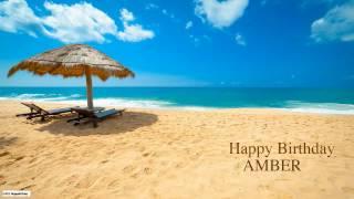 Amber  Nature & Naturaleza - Happy Birthday