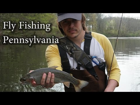FLY FISHING FOR TROUT IN PENNSYLVANIA
