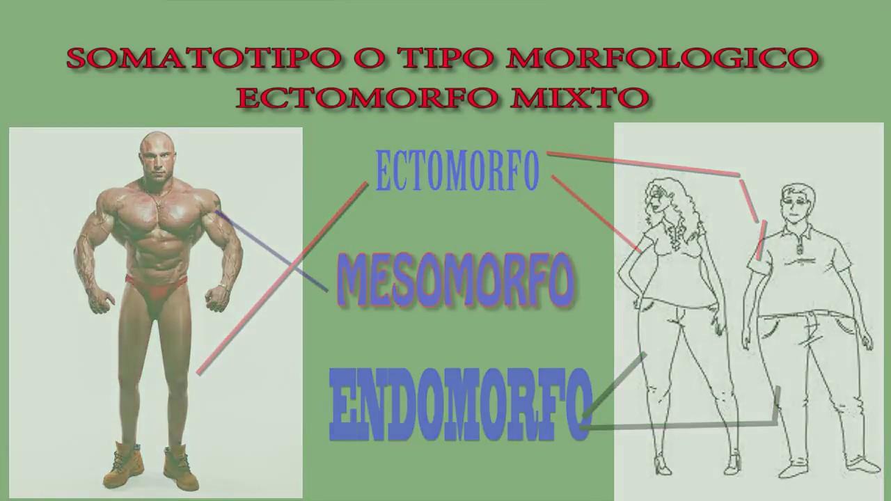 Rutina de ejercicios y dieta para ectomorfos