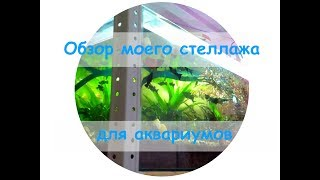 Обзор моего стеллажа для аквариумов