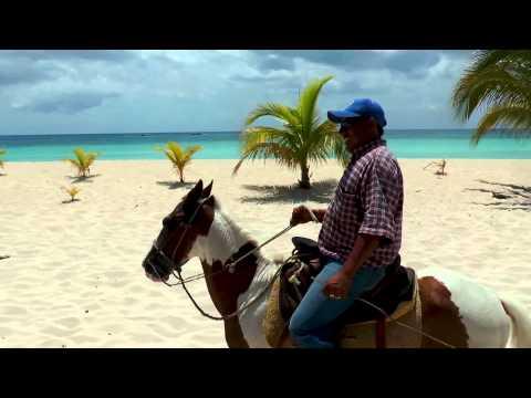 Mr Sancho's Horseback riding tour.