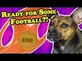 Funny dog football - DOG TOY REVIEWS | KONG Jumbler Football Dog Toy